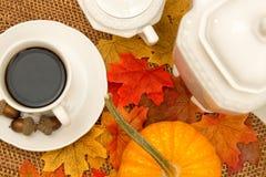 Copo de café, café, Sugar Bowl, filtro, bolotas, abóbora, e folhas da queda III Fotografia de Stock Royalty Free