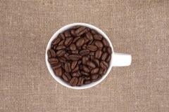 Copo de café da grão Imagem de Stock Royalty Free