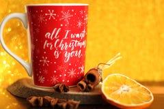 Copo de café do Natal e especiarias, fundo do bokeh Fotos de Stock