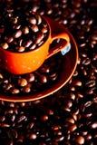 Copo de café dos feijões Imagens de Stock