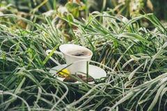 Copo de café na grama congelada Imagens de Stock