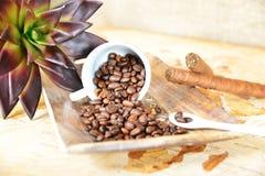 Copo de caf? com feij?es fotografia de stock royalty free