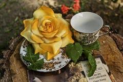 Copo de chá cerâmico do vintage com flor amarela Fotos de Stock Royalty Free