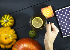 Copo de chá em uma mão fêmea Fotos de Stock