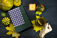 Copo de chá em uma mão fêmea Imagens de Stock