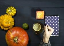 Copo de chá em uma mão fêmea Imagens de Stock Royalty Free