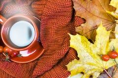 Copo de chá, manta vermelha, vegetais em uma cesta de vime, Apple vermelho, pimenta de sino verde, folhas de bordo do outono em u fotos de stock royalty free