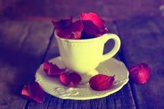 Copo de chá tonificado da foto com cubos do açúcar Imagem de Stock Royalty Free
