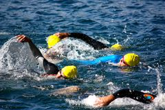 Copo de Cusio, Triathlon olímpico imagem de stock royalty free