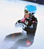 Copo de mundo 2010 da paralela do gigante do Snowboard Foto de Stock Royalty Free