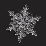 Copo de nieve aislado en fondo negro Foto de archivo libre de regalías