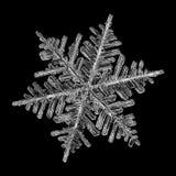 Copo de nieve aislado en fondo negro Imágenes de archivo libres de regalías