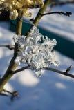 Copo de nieve de plata en nieve Fotografía de archivo libre de regalías