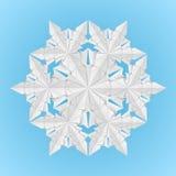 Copo de nieve del Libro Blanco Fotografía de archivo libre de regalías