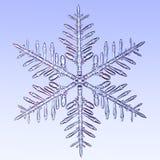 Copo de nieve microscópico Imágenes de archivo libres de regalías