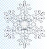 Copo de nieve transparente Translúcido solamente en fichero del vector Imagen de archivo libre de regalías