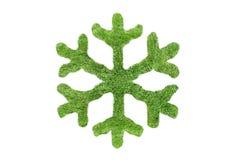 Copo de nieve verde Imagen de archivo libre de regalías