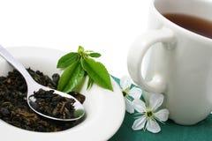 Copo de relaxamento do chá fotos de stock