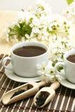 Copo de relaxamento do chá da fruta fotografia de stock royalty free