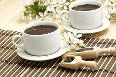 Copo de relaxamento do chá da fruta imagens de stock royalty free
