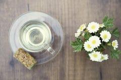 Copo de vidro do chá com a margarida no branco Imagem de Stock