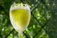Copo de vinho com vinho branco Fotos de Stock Royalty Free