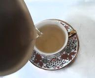 copo delicado e refinado imagens de stock