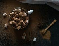 Copo do cacau com inverno escuro do chocolate quente do marshmallow fotografia de stock royalty free