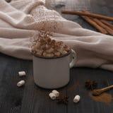 Copo do cacau com o inverno do Natal dos anis do marshmallow e da canela acolhedor fotografia de stock