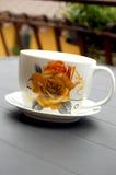 Copo do chá Foto de Stock Royalty Free