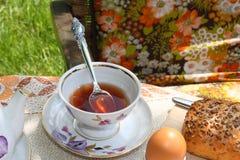 Copo do chá. Foto de Stock Royalty Free