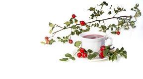 Copo do chá com as rosas selvagens no fundo branco Foto de Stock