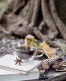 Copo do chá com folhas de outono Fotos de Stock