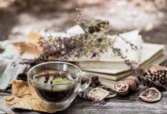 Copo do chá com folhas de outono Imagens de Stock