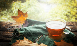 Copo do chá com folhas de outono e do guardanapo verde no peitoril de madeira da janela no fundo da natureza Imagem de Stock Royalty Free
