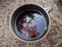 Copo do chá com um fundo blured do feno foto de stock