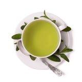 Copo do chá da hortelã fotografia de stock royalty free
