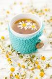 Copo do chá de camomila fotografia de stock