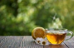 Copo do chá de camomila com flores da camomila imagens de stock