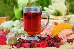 Copo do chá dos rosehips Foto de Stock Royalty Free