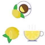 Copo do chá e do limão Fotografia de Stock Royalty Free