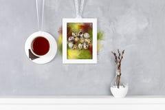 Copo do chá e dos chocolates na parede Ovos de codorniz e penas coloridas em um fundo concreto Imagem de Stock