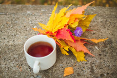 Copo do chá em uma laje de cimento com folhas de outono Fotografia de Stock