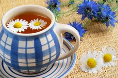 Copo do chá erval Imagem de Stock Royalty Free