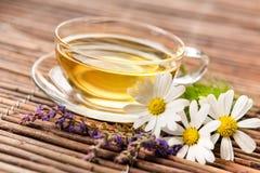 Copo do chá erval foto de stock royalty free