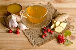 Copo do chá, fatias de gengibre, mel, bagas do rosehip e viburnum Fotografia de Stock