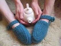 Copo do chá, inverno Imagens de Stock Royalty Free