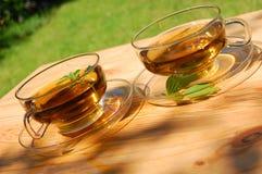 Copo do chá no jardim fotografia de stock royalty free