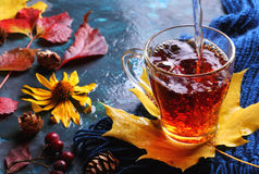 Copo do chá preto quente em decorações do outono Foto de Stock