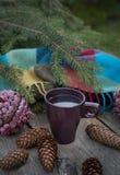 Copo do chá quente em uma tabela de madeira rústica Fotografia de Stock Royalty Free